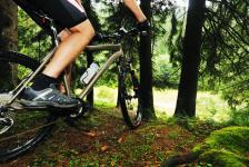 Billedet viser en mand der kører på sin mountainbike i skoven.